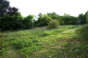 Trouver un terrain constructible à Lachassage